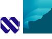 NIPRO JMI Pharma Limited Bangladesh Logo
