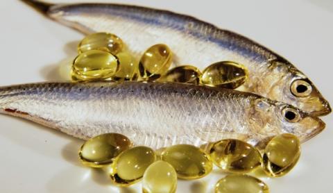 fish oil producing fish