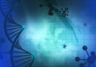 The Truth about Prenatal DNA Testing