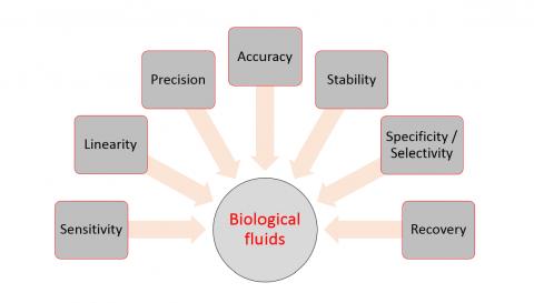 Main validation parameters of bioanalytical methods