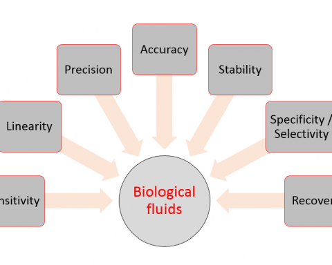 Main validation parameters of bioanalytical methods
