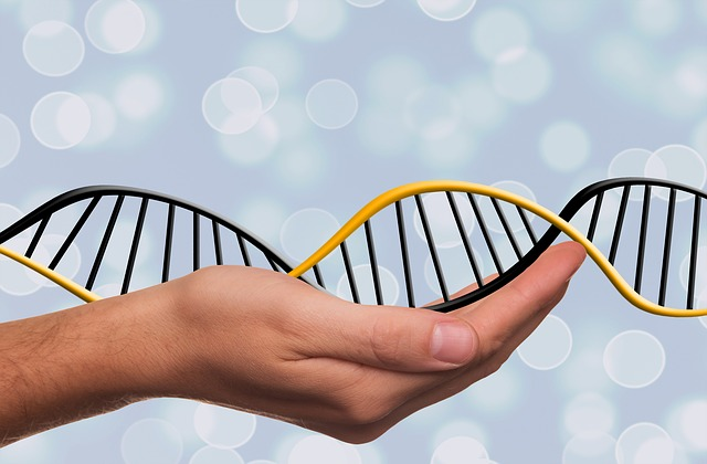 Accessible DNA Testing and Its Impact on the Pharmaceuticals