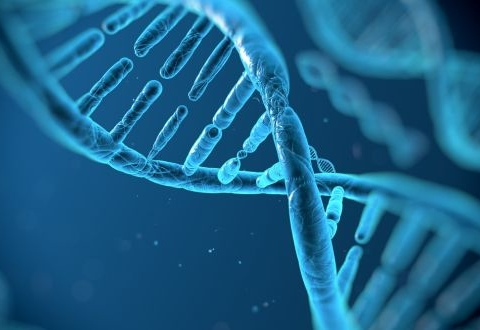 US$3 Bn Genealogy Products and Services Market Driven by Surging Demand for DNA Testing: Fact.MR Study