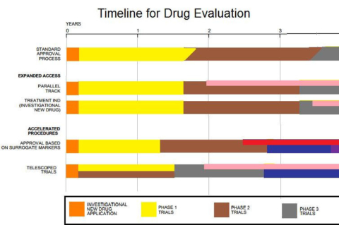 Clinical Trial Phases of Drug Evaluation Process